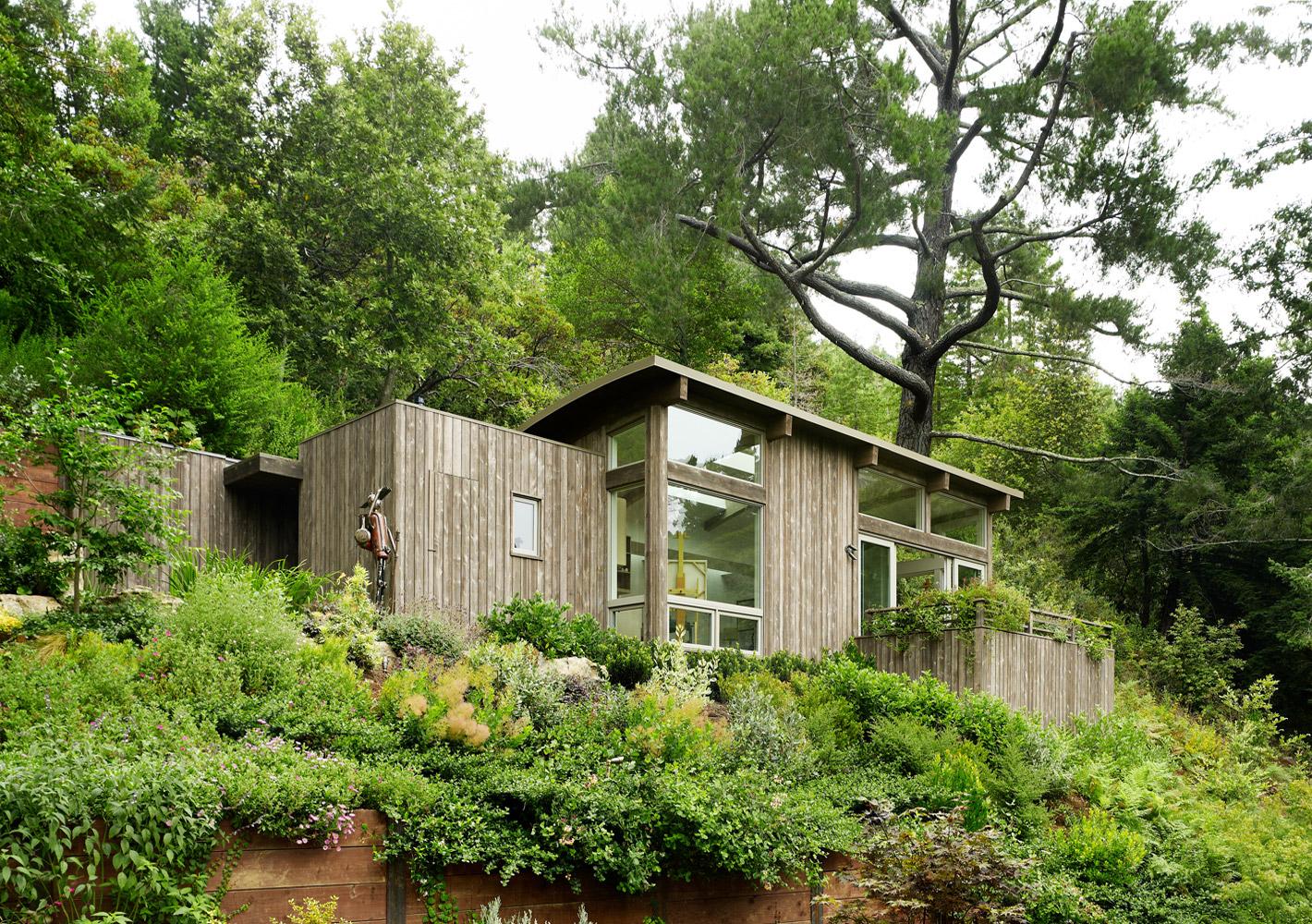 Mill valley cabins feldman architecture for Feldman architecture