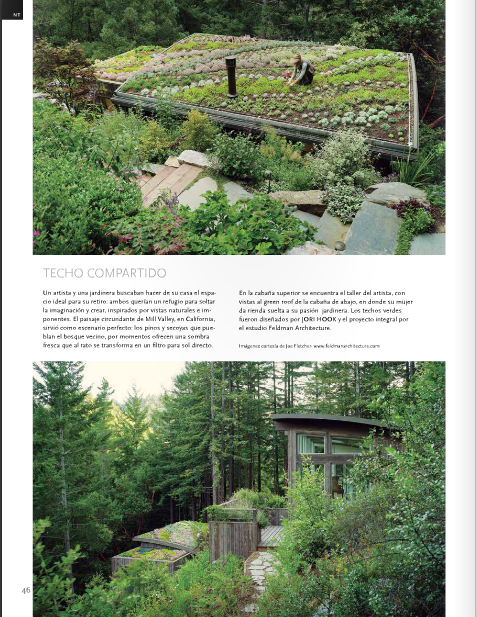 Mill Valley Cabins featured in Estilo Propio!
